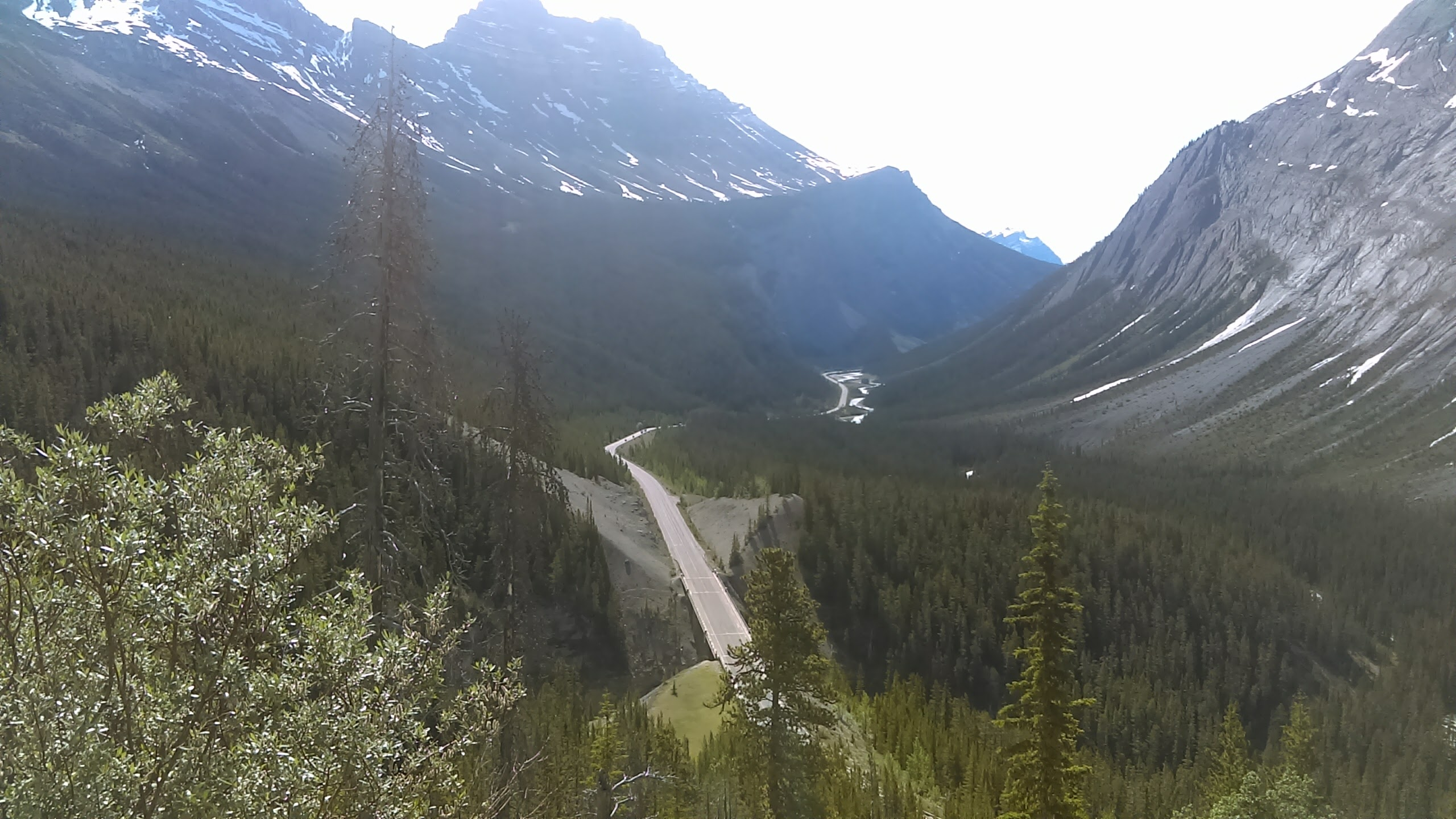 Big HIll and Big Bend, Ice Fields Parkway, Alberta, 6-29-2017